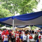 Tenda Semi Dekor 6